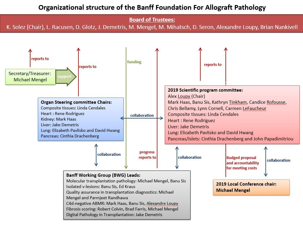 Non Profit Org Chart Organizational Wiring Diagrams Typical Cable Visio Workflow Templates
