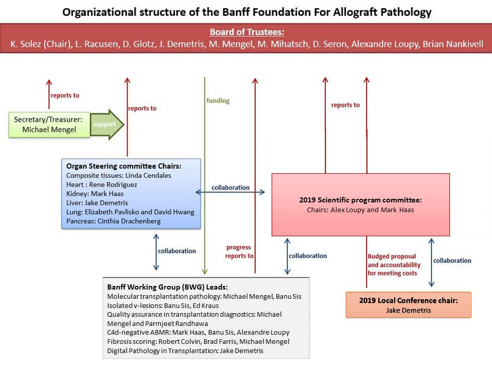 About The Banff Foundation for Allograft Pathology